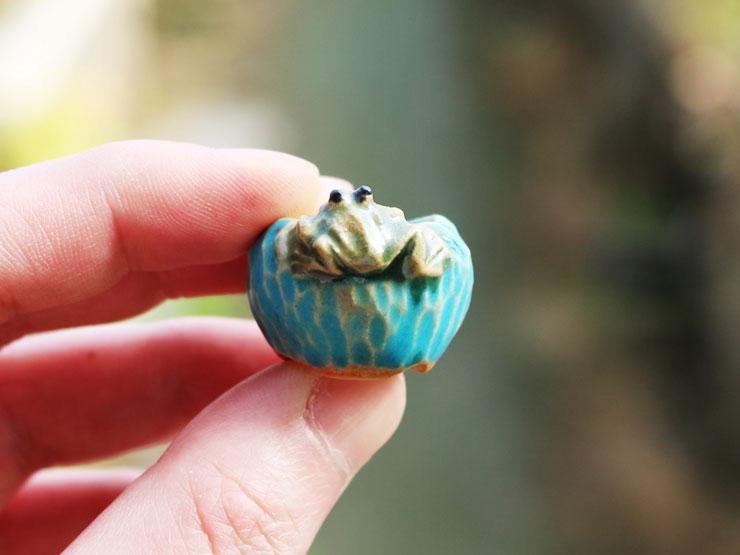 개구리-콩분.jpg