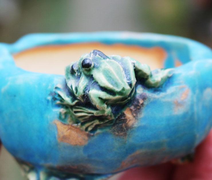 개구리-분재화분-2.jpg